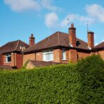 The Benefits of Garden Hedges