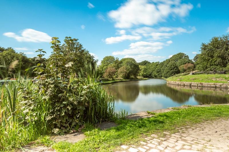 Wildlife Corridor In Wigan