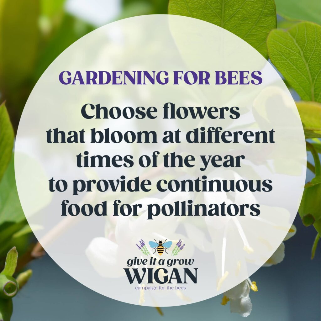 gardening for bees 01