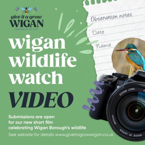 Wigan Wildlife Watch - Video