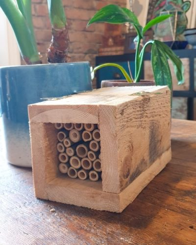 Bee hotel for Sale